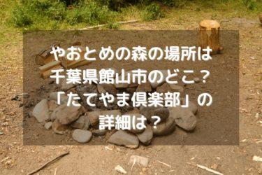 やおとめの森はどこ?館山市の「たてやま倶楽部」の詳細は?「ヒルナンデス」