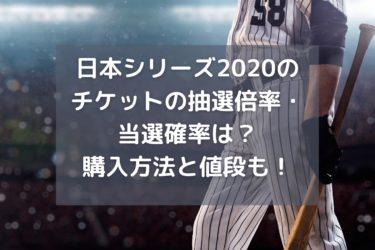 日本シリーズ2020のチケットの抽選倍率・当選確率は?購入方法と値段も!