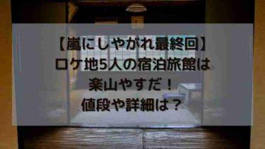 【嵐にしやがれ最終回ロケ地】温泉旅館は楽山やすだ!値段や詳細は?