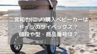 二宮和也購入ベビーカーはドイツのサイベックス?型・色・商品番号や値段は?