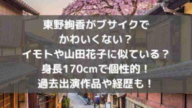 東野絢香がブサイクでかわいくない?イモトや山田花子に似ている?身長170cmで個性的!