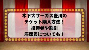 木下大サーカス豊川のチケット購入方法!招待券や割引・座席表についても!