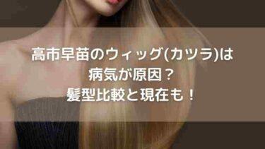 高市早苗のウィッグ(カツラ)は病気が原因?髪型比較と現在も!