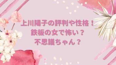 上川陽子の評判や性格!鉄板の女で怖い?不思議ちゃん?